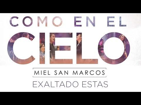 Miel San Marcos - Exaltado Estas