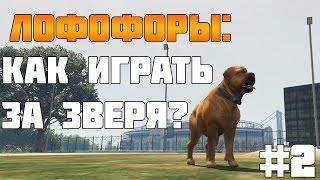 #2 GTA 5 PC - Как Играть За Животных? (Лофофоры)