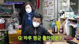 """[영상]""""온실 유지비만 수천만원···농장 유지할 방법이 없다"""""""