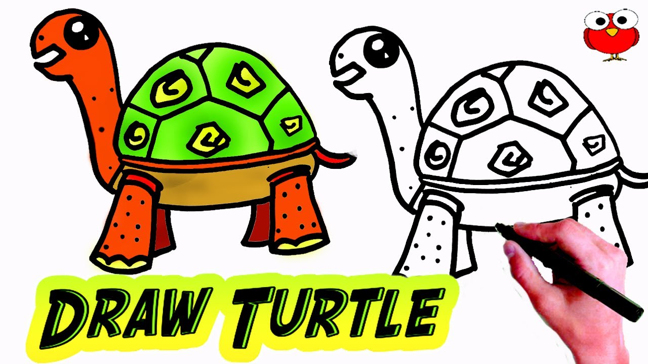 Easy turtle drawing