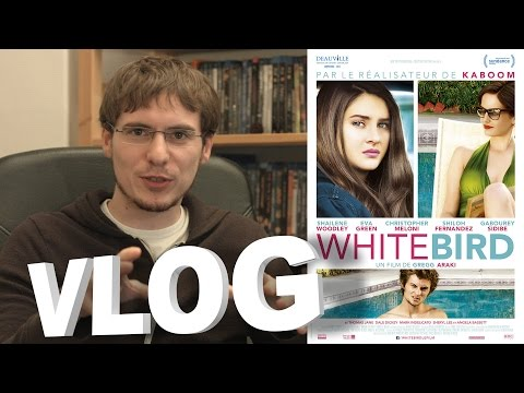 Vlog - White Bird