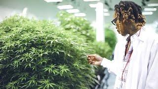 Wiz Khalifa - DayToday: The Right Track