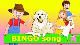 BINGO song | Nursery Rhymes | Kids Song | Jaccoled