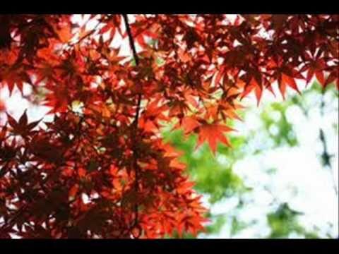 Canto de primavera - Nahuatl