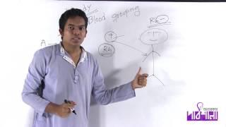 09. Blood Grouping | রক্তের গ্রুপ | OnnoRokom Pathshala
