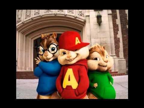 Alvin Y Las Ardillas - Tacata 2012! Tacabro Y Rodriguez video