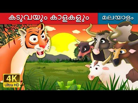 കടുവയും കാളകളും | Tiger and Buffaloes Story in Malayalam | Malayalam Story | Malayalam Fairy Tales