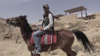 FINALLY: stables for working horses in Petra