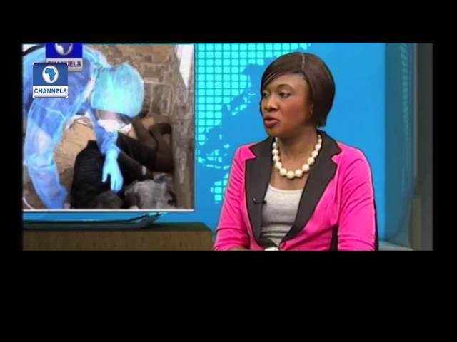 Network Africa: Ebola Containment In Nigeria. PT1