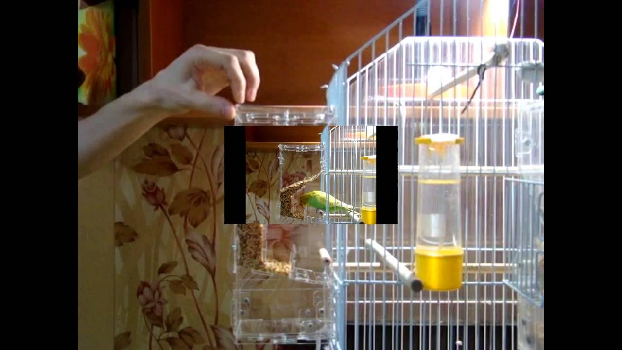 Кормушка для птиц автоматическая