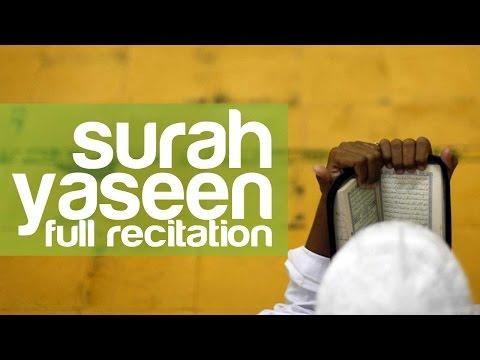 media mp3 surah yasin by mishary rashid with translation