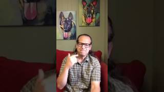 Motivation | Never have to say NO to your dog, BUT... | Solid K9 Training Dog Training