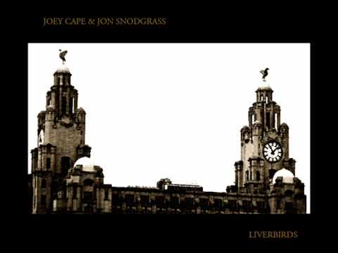 Joey Cape - Whipping Boy