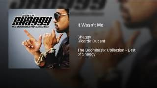 It Wasn 39 T Me Shaggy Feat Richardo Ducent