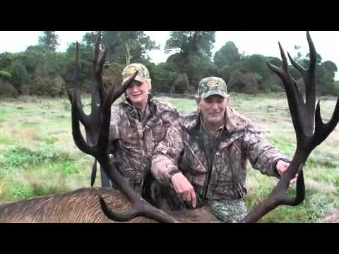 red-stag-hunting-2-wildside-hunting-safaris-red-stag-hunting-on-the-wildsidem4v.html