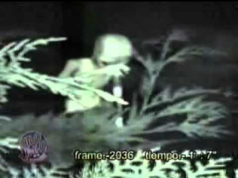 videos ineditos de ovnis: