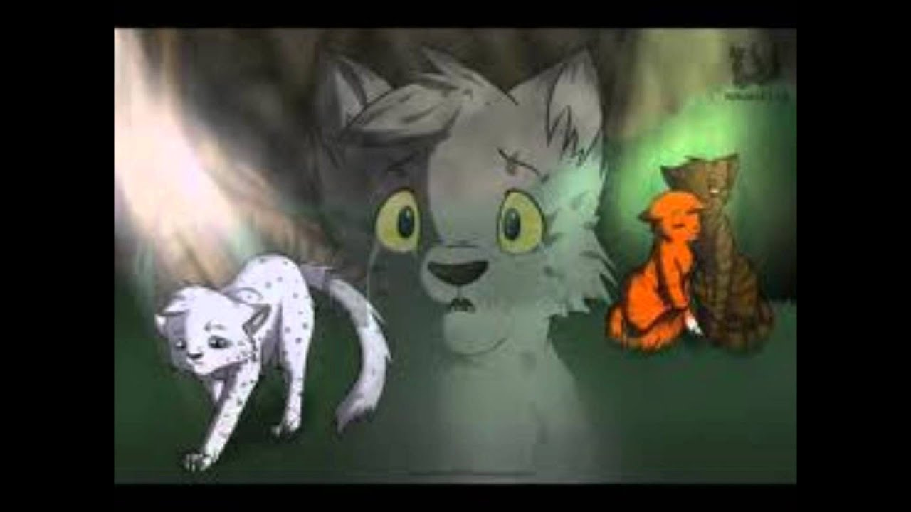 WARRIOR CATS Who  Warrior Cats Ashfur And Squirrelflight