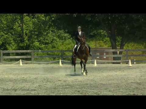 Brenda Mendenhall on Rendezvous HTF, T-4, Heavenly Waters Dressage, 6/19/2010 Video