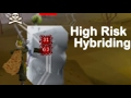 High Risk Hybriding | Tribriding [Oldschool Runescape 2007] MP3