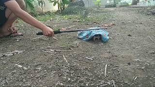 Test baton Mua Trên LAZADA