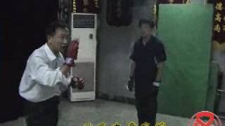 意拳锻炼 Yiquan training,10-19, pt 5-10, 散手 Free Hands