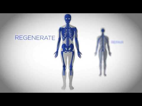The Science Behind Stem Cell Technology and Luminesce