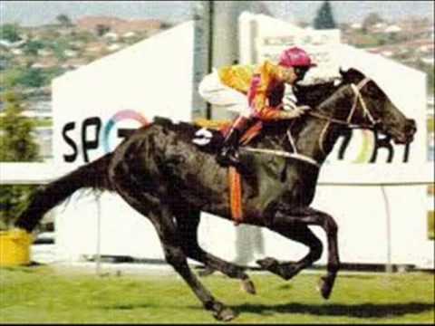 Laberinto corridos de caballos mixx - SAMUEL EL DJ KORITA
