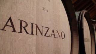 Wines of Navarra - Chivite/Arinzano