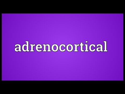 Header of Adrenocortical