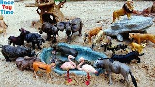 Toy Wild Safari Animals - Learn Animal Names For Kids