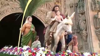 Procesión Jesús Amigo de los Niños, Semana Santa Salamanca 2014