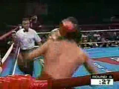 Roy Jones Jr. Highlight/Tribute Video Video