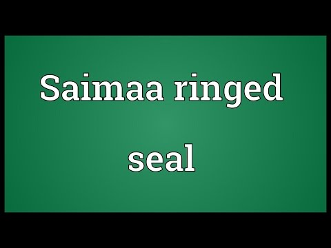 Saimaa ringed seal Meaning