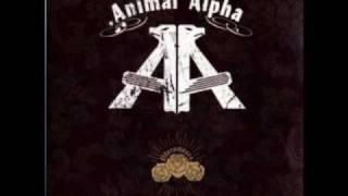 Watch Animal Alpha Bundy video