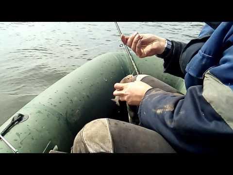 рыбалка в астрахани в 2017 году