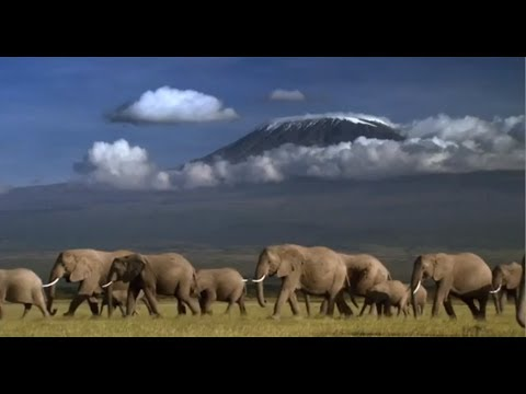 Access 360° World Heritage Kilimanjaro