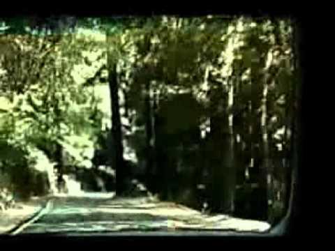 Drive - Todd Rundgren