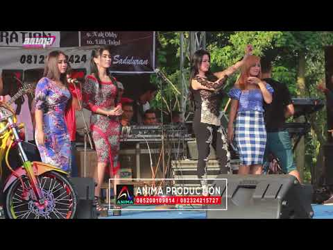 download lagu Tumhiho All Artis Romansa Wedding Lilik & Hany Gelang gratis