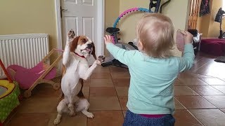 Dogs are More Than Pets, They are Family | Charlie the Dog and Baby Laura