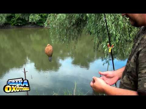 передача про рибалку ловля карася