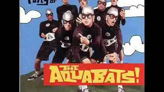 Watch Aquabats Attacked By Snakes video