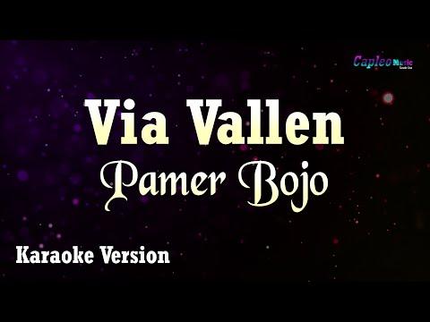 Download Karaoke Via Vallen - Pamer Bojo Tanpa Vocal Mp4 baru