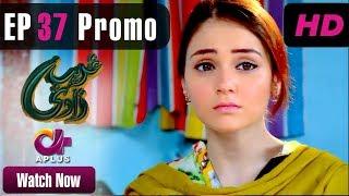 Ghareebzaadi - Episode 37 Promo | A Plus ᴴᴰ Drama | Suzzaine Fatima, Shakeel Ahmed, Ghazala Kaife