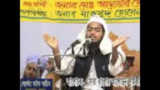 New Bangla Waz By Mufti Habibur Rahman Misbah [কুয়াকাটার হুজুর]  পরিপূর্ণ ইসলাম