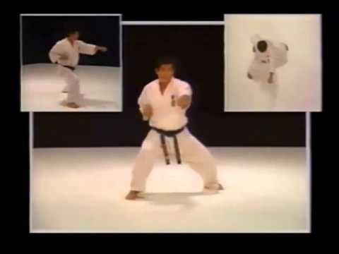 Kyokushin Karate Bible HD.wmv Image 1