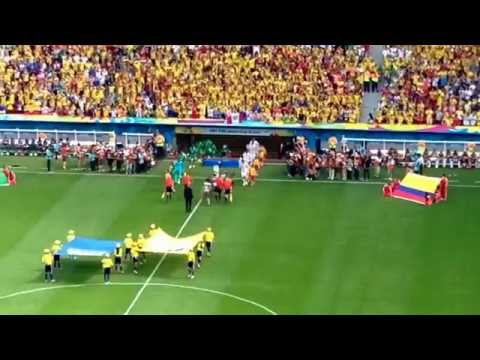 Entry of Players in Colombia vs Ivory Coast Match WC 2014