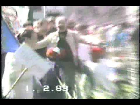 Music video Daphne's Purple Circus/Saturnalia/Amoeba Quiche - Your Time - Music Video Muzikoo