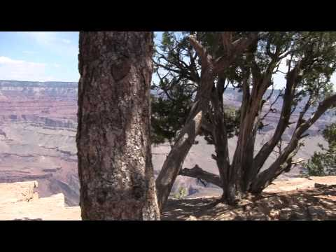 Walking along the very accessible rim trail on the South Rim of the Grand Canyon