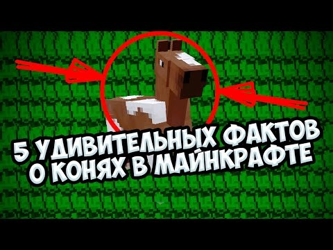 🐴🏇5 УДИВИТЕЛЬНЫХ ФАКТОВ О 🏇🐴 КОНЯХ В МАЙНКРАФТЕ! ПЯТЬ ФАКТОВ О ЛОШАДЯХ  [minecraft факты]