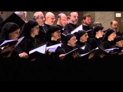 Mariano Garau - Rorate caeli